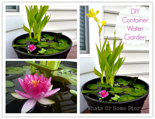 DIY beautiful container water garden tutorial