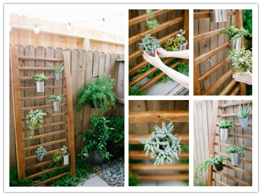 How to make DIY outdoor succulent wall