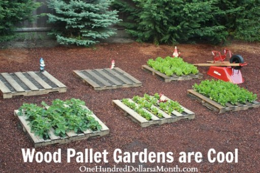 How to DIY wood pallet garden 1