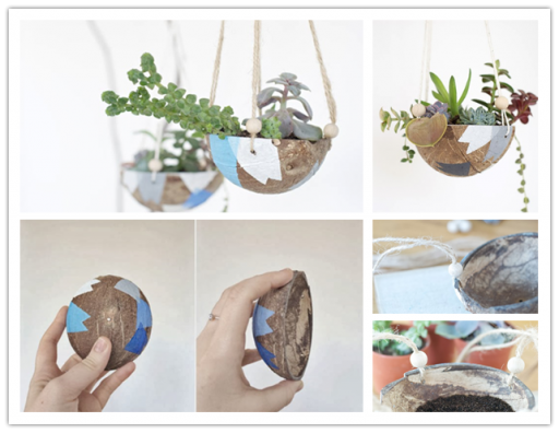 How to make DIY coconut shell hanging planters