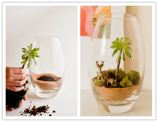 How to make DIY terrarium