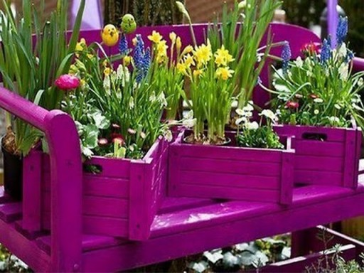 Some unusual garden ideas 2