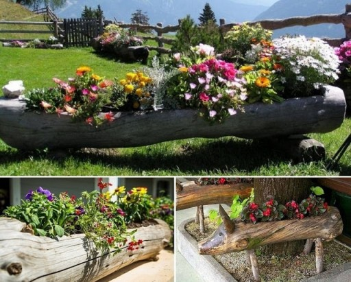 Some unusual garden ideas 4