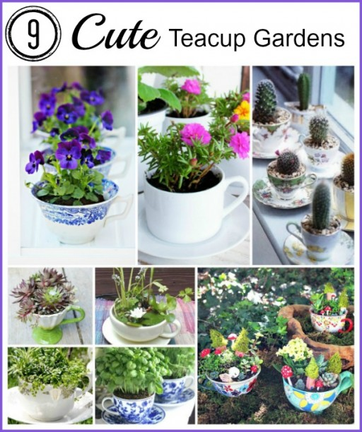 9 cute teacup garden ideas