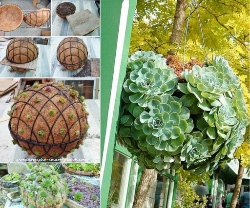How To Make A DIY Succulent Hanging Kissing Ball