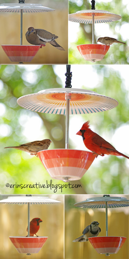 How To Make Lovely DIY Bird Feeder 1