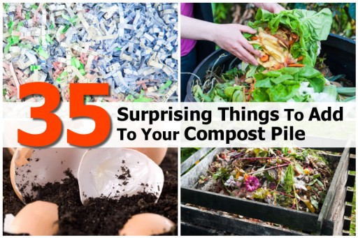 35 Good Stuff To Add To Your Compost Pile