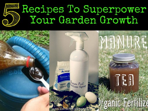 5 Recipes To Superpower Your Garden Growth