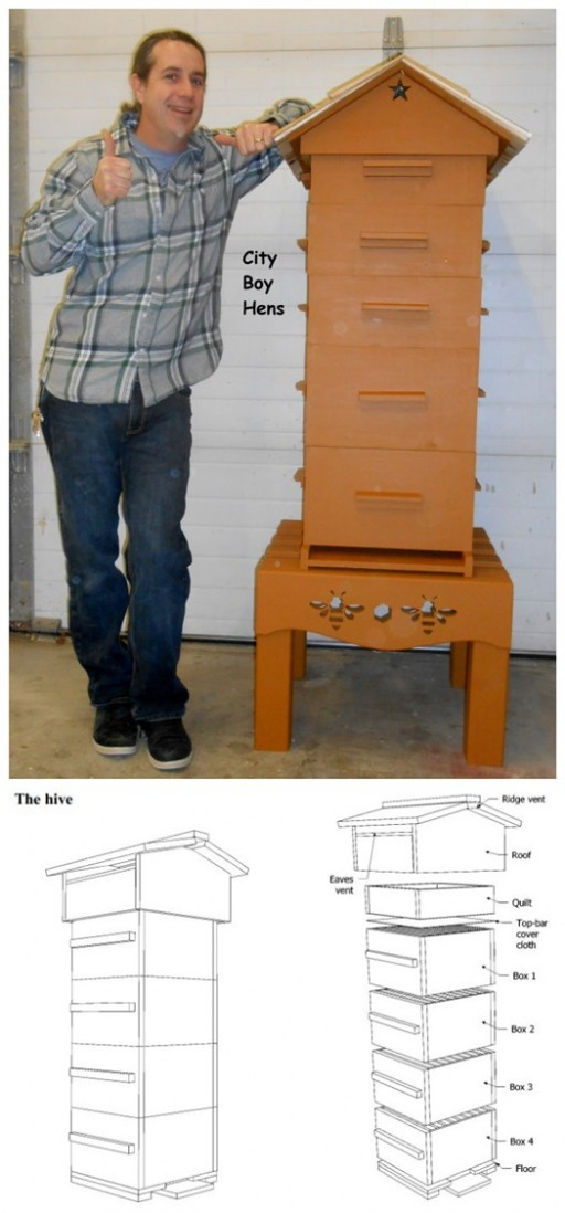 How To Build A DIY Honey Beehive Boxes 2