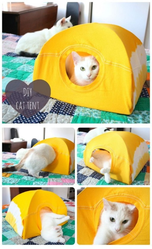 How To Make A Simple DIY Cat Tent With A T-shirt & Two Hangers 2