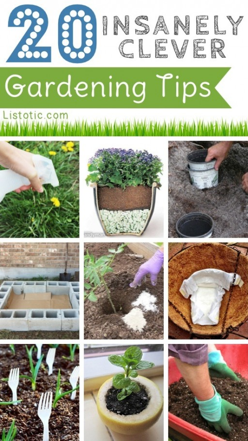 20 Insanely Clever Garden Tips And Tricks
