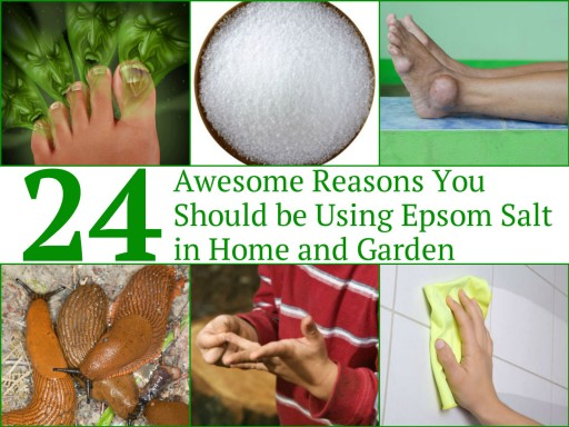 24 Awesome Reasons Why You Should Use Epsom Salt In Home & Garden