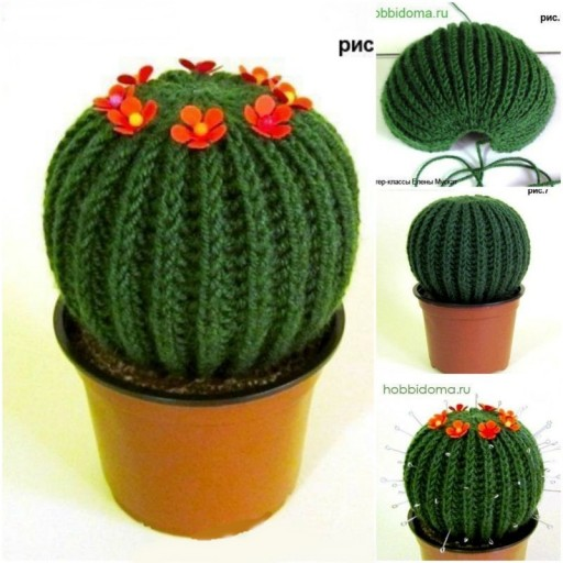 DIY Knitted cactus Free Knitting Pattern