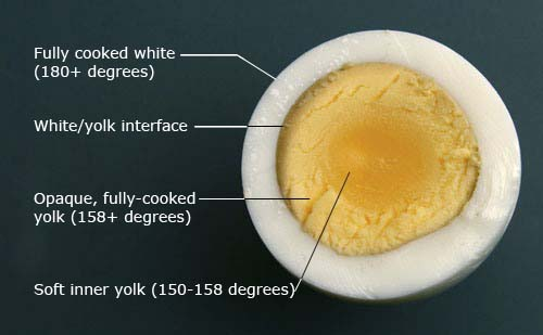 How To Boil Perfect Hard-Boiled Eggs Easy 4