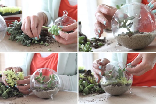 How To Make A DIY Glass Vessel Terrarium