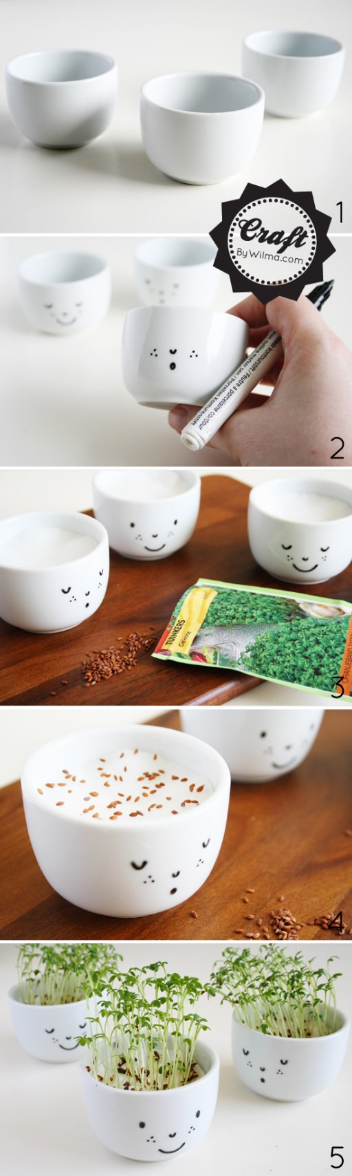 How To Make Cute Cress Cups With A Face 1