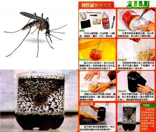 Do-It-Yourself Mosquito Trap That Really Works