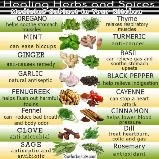 Healing Herbs And Spices - The Medicine Cabinet In Your Kitchen