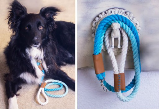 How To Make Stylish Ombre Rope Dog Leash