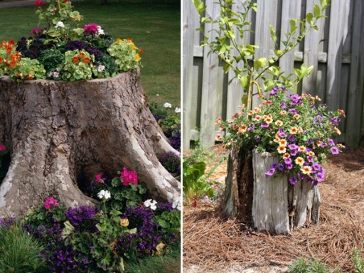 Three Ways To Decorate Old Tree Stumps In Your Garden