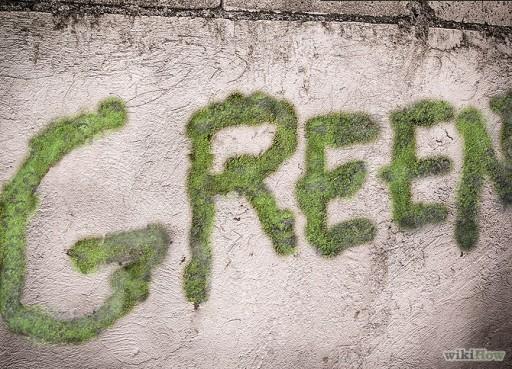 moss graffiti 1